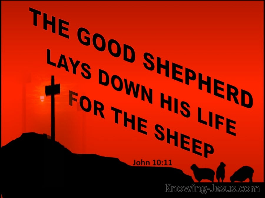 John 10:11 The Good Shepherd Lays Down His Life (red)