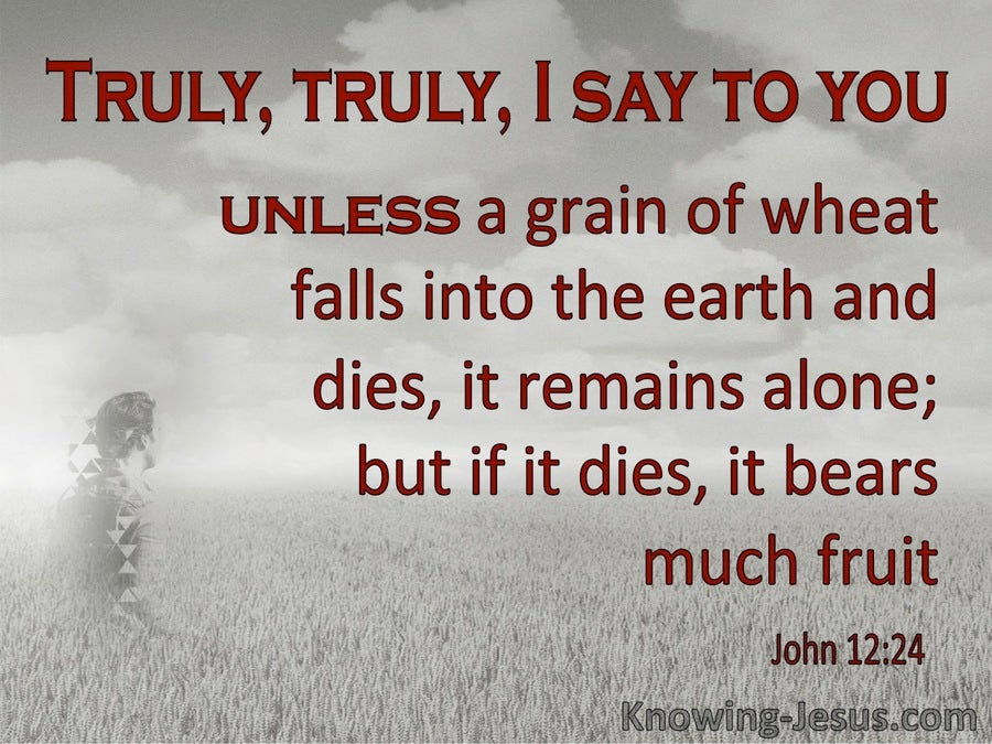 John 12:24 Unless A Grain Of Wheat Dies (gray)