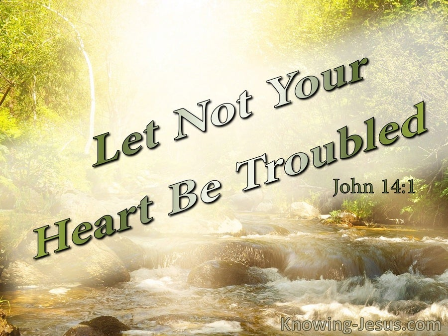John 14:1 Let Not Your Heart Be Troubled (sage)