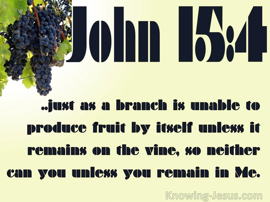 John 15:4 Abide In The Vine (yellow)