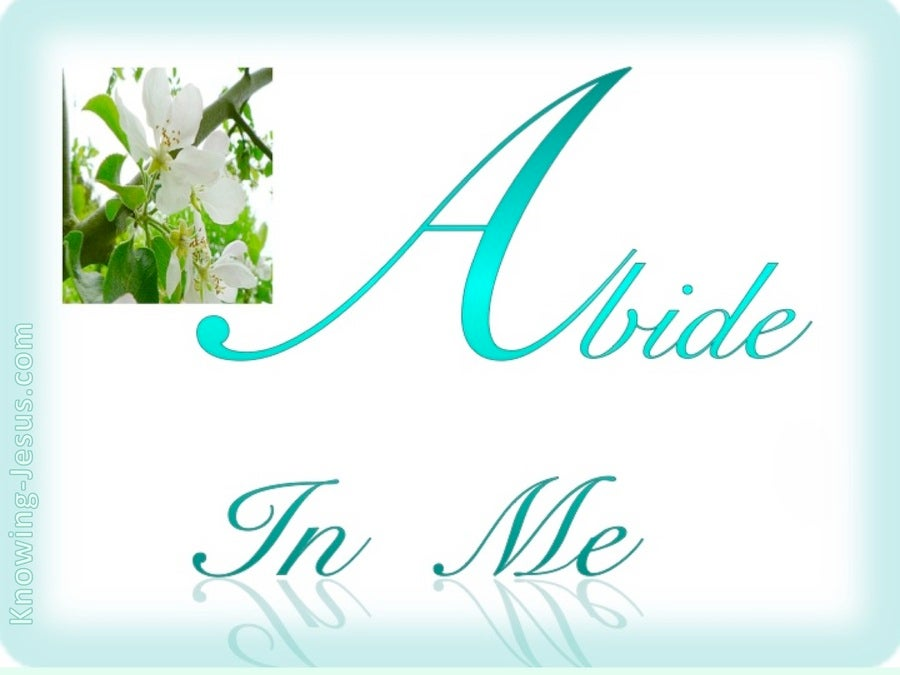 John 15:4 Abide In Me (blue)