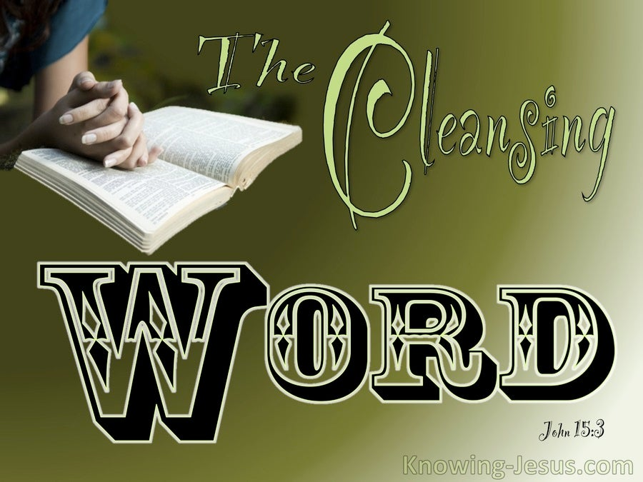John 15:3 You Are Clean Because Of The Word (sage)