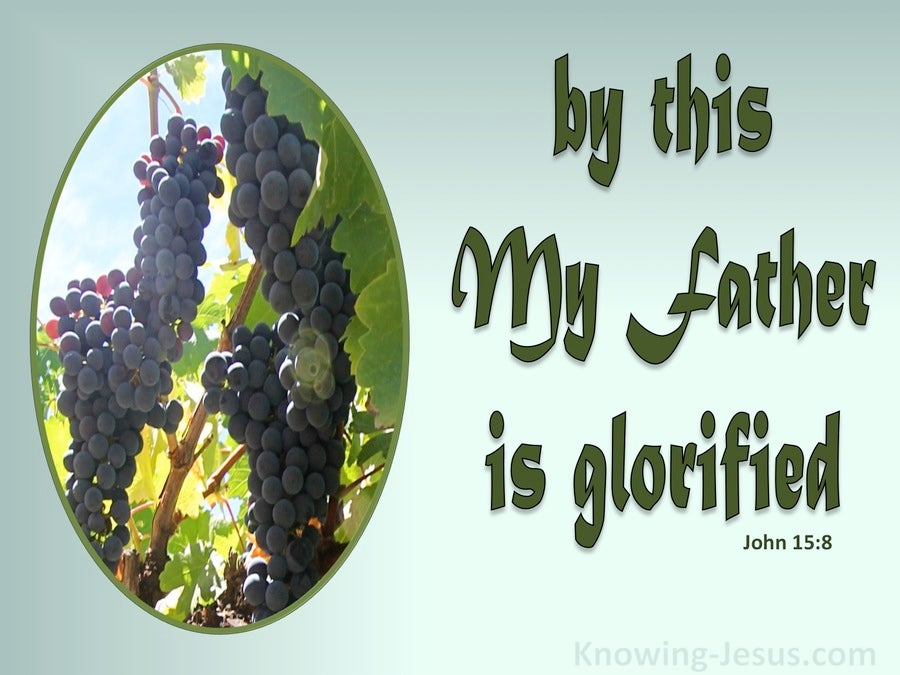 John 15:8 My Father Is Glorified When You Bear Much Fruit (green)