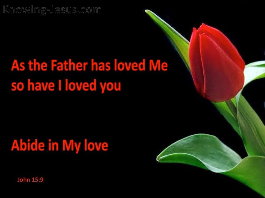Joh 15 9-12