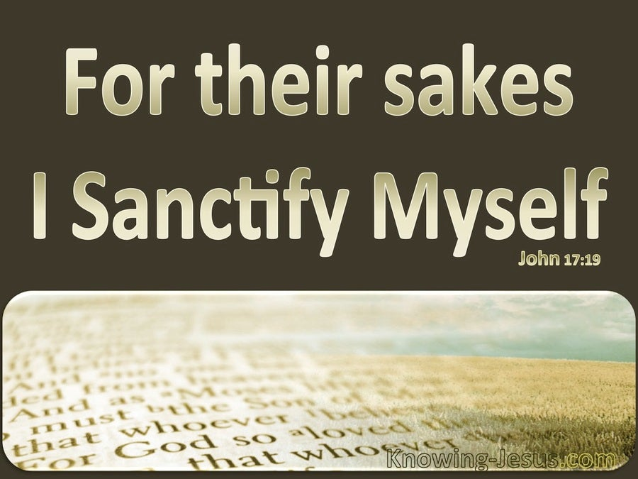 John 17:19 For Their Sakes I Sanctify Myself (brown)