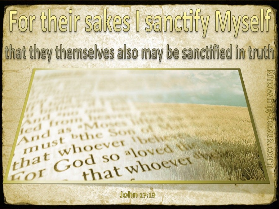 John 17:19 For Their Sakes I Sanctify Myself (gold)