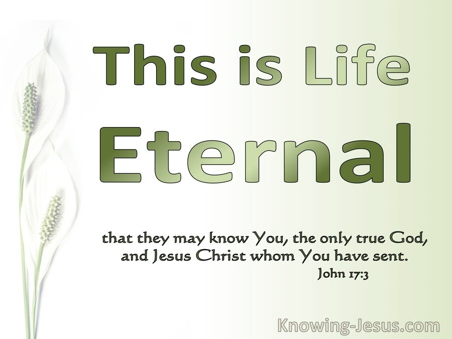 John 17:7 This Is Eternal Life (green)