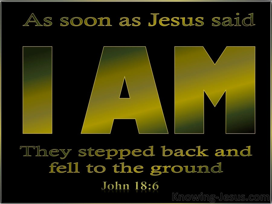 John 18:6 Jesus Said I Am And They All Fell Back (black)