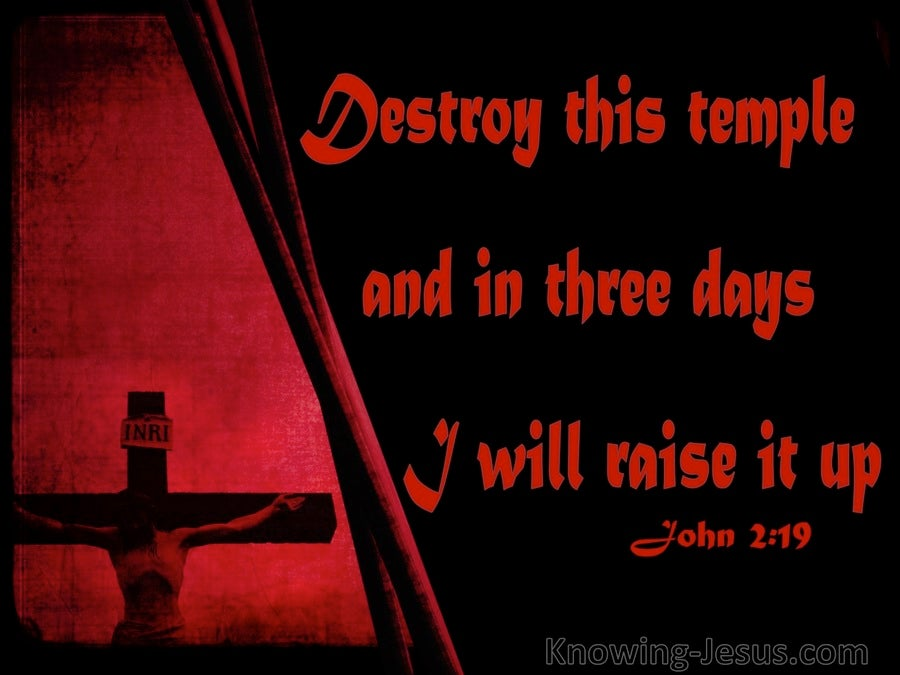 John 2:19 Destroy This Temple And I Will Raise It Up (black)