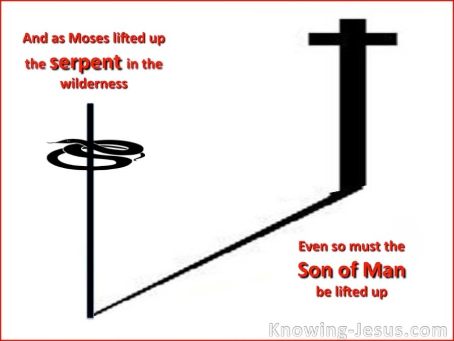 John 3:14 The Son Of Man Must Be Lifted Up (white)