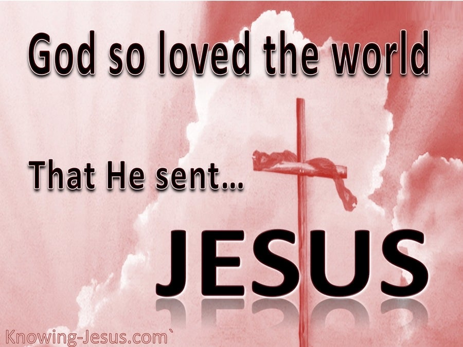 John 3:16 God So Loved The World (pink)