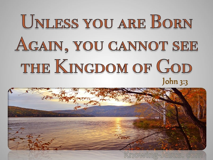 John 3:3 You Must Be Born Again (gray)