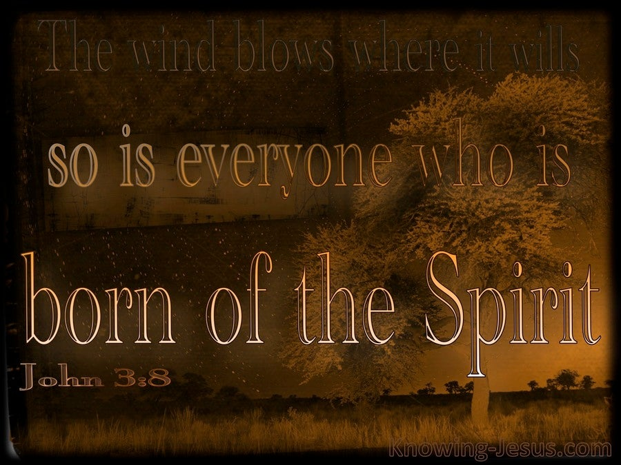John 3:8 The Wind Blows Where It Wills (brown)