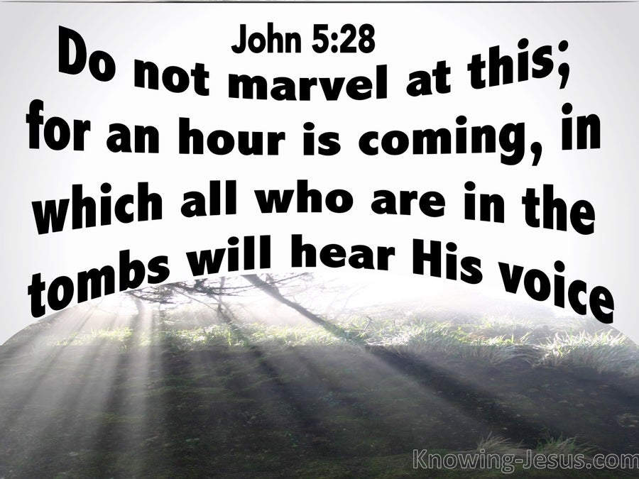John 5:28 All In The Tombs WIll Hear His Voice (white)