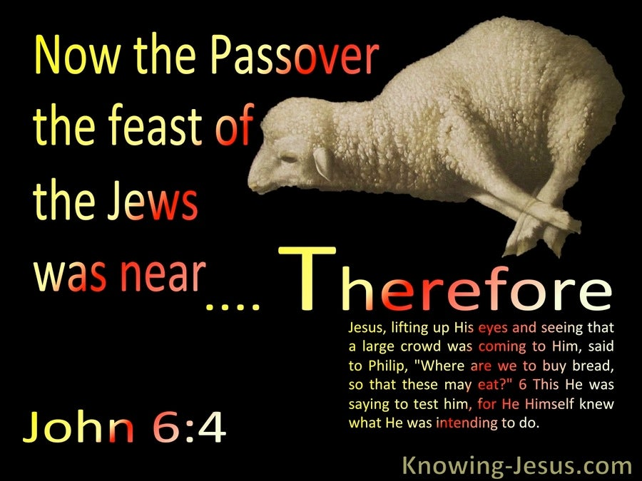 John 6:4 The Feast Of The Jews : The Passover Was Near (black)