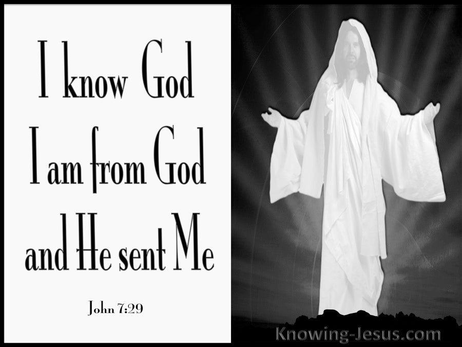 John 7:29 I Am Sent From God (white)