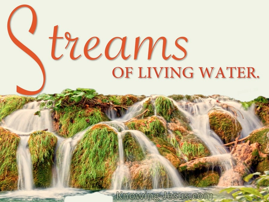 - John 7:38 Streams Of Living Water Deep Within (orange)