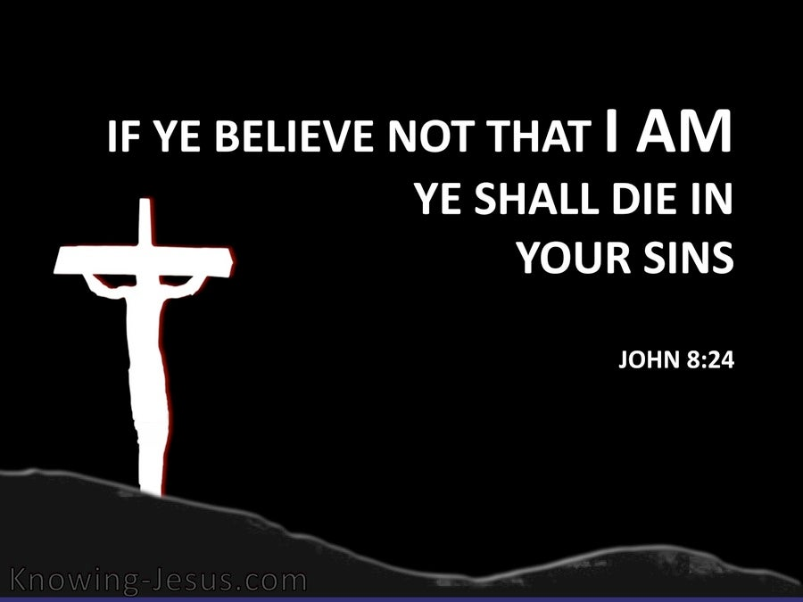 John 8:24 If Ye Believe Not Ye Shall Die in Your Sins (black)