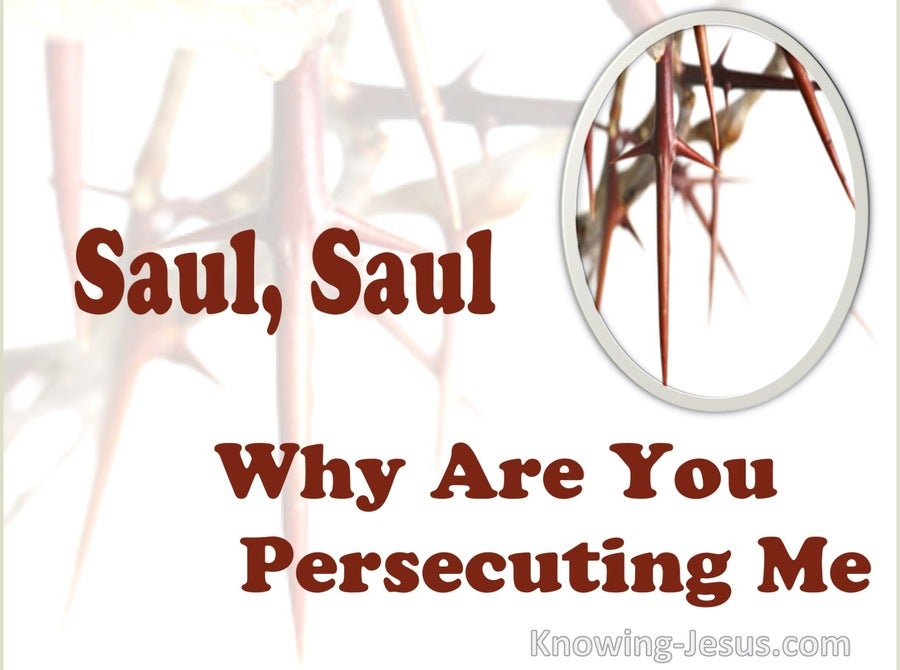 Acts 26:14 Saul, Saul Why Are You Persecuting Me (maroon)
