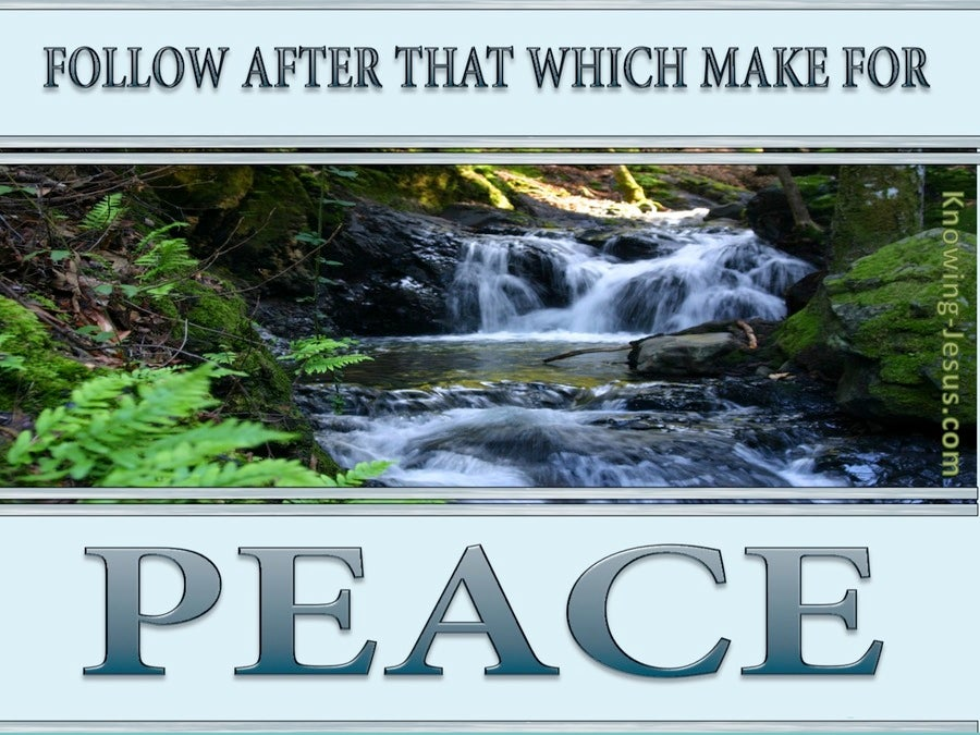 Romans 14:19 Follow After That Which Makes For Peace (gray)