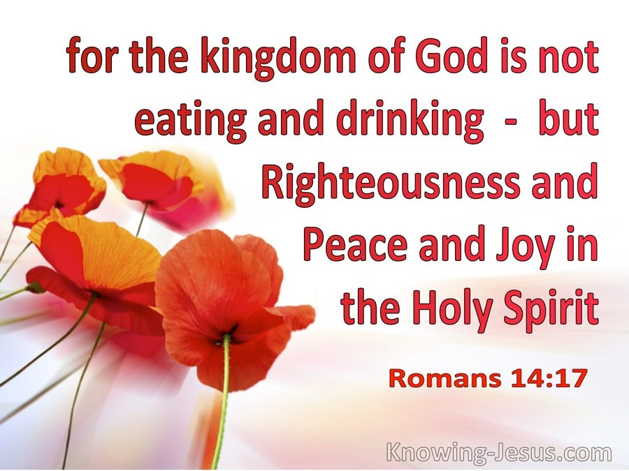 Romans 14:17 The Kingdom Is Righteousness Oeace Joy In The Holy Spirit (white)
