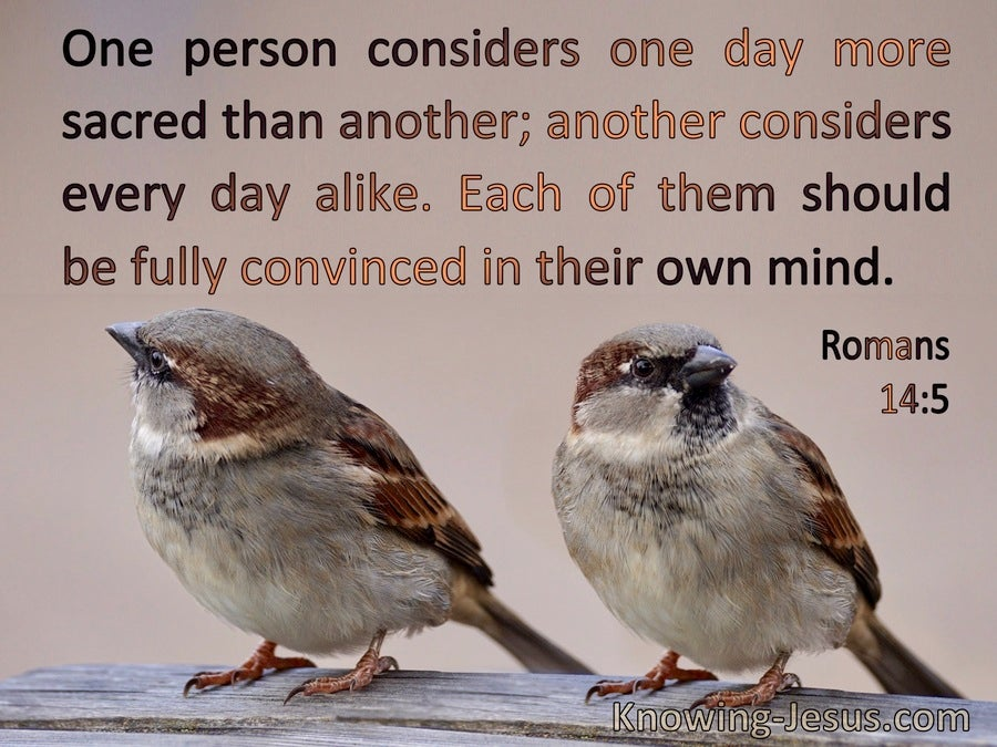 Romans 14:5 Each Should Be Convinced In Their Own Mind (brown)