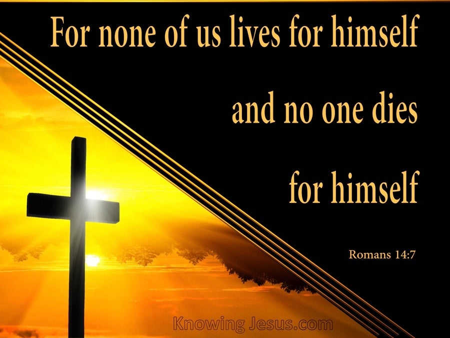Romans 14:7 For None Of Us Lives For Himself (orange)