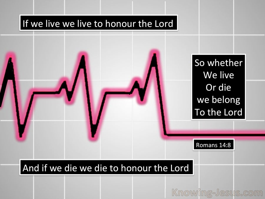 Romans 14:8 Live and Die to the Lord (gray)