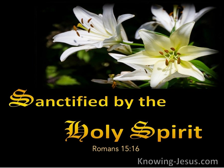 Romans 15:16 Sanctified By The Holy Spirit (yellow)