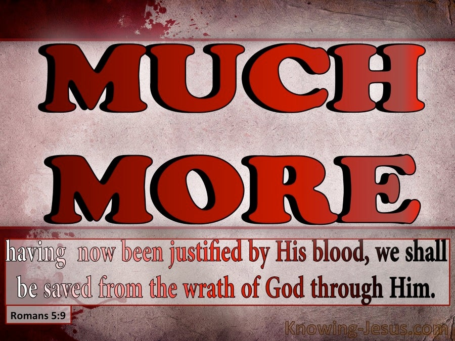 The Much-More Grace of God (devotional) (pink) - Romans 5-9