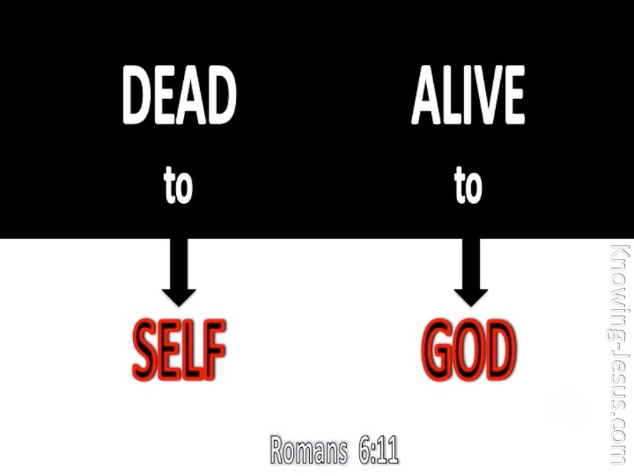Alive Unto God (devotional) (black) - Romans 6:11