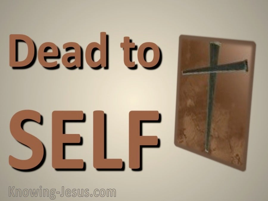 Romans 6:11 Dead to Self (brown)