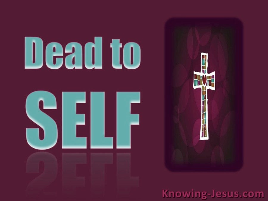 Romans 6:11 Dead to Self (maroon)