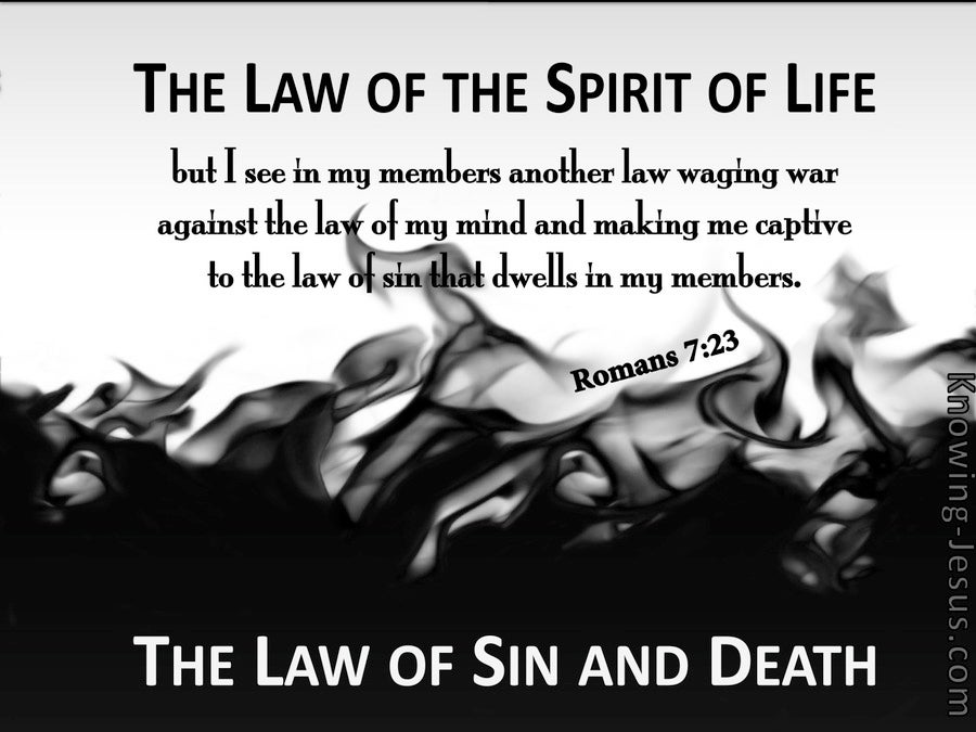 Romans 7:23 The Law Of Sin And Death (gray)