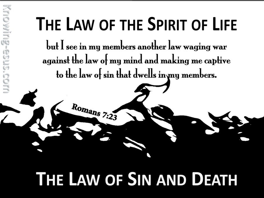 Romans 7:23 The Law Of  The Spirit Of Life (black)