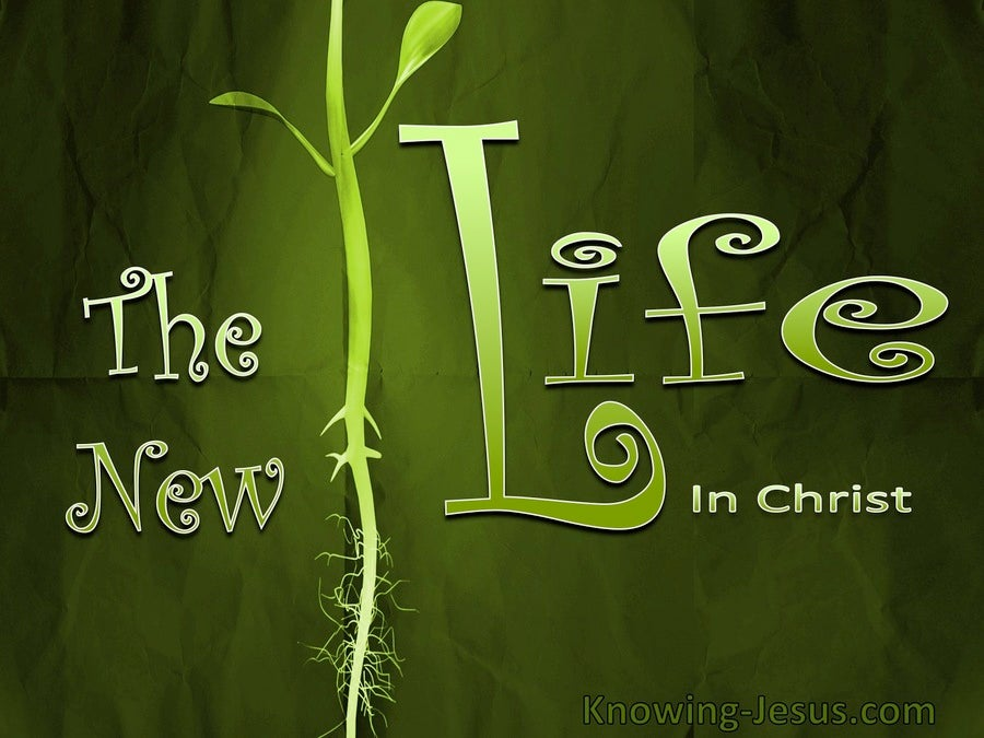 Romans 7:6 The New Life (devotional)03:12 (green)