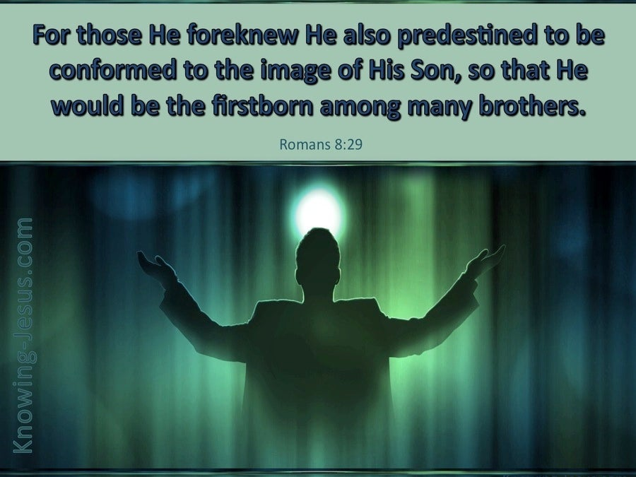 Romans 8:29 Conformed Into The Image Of Christ (green)