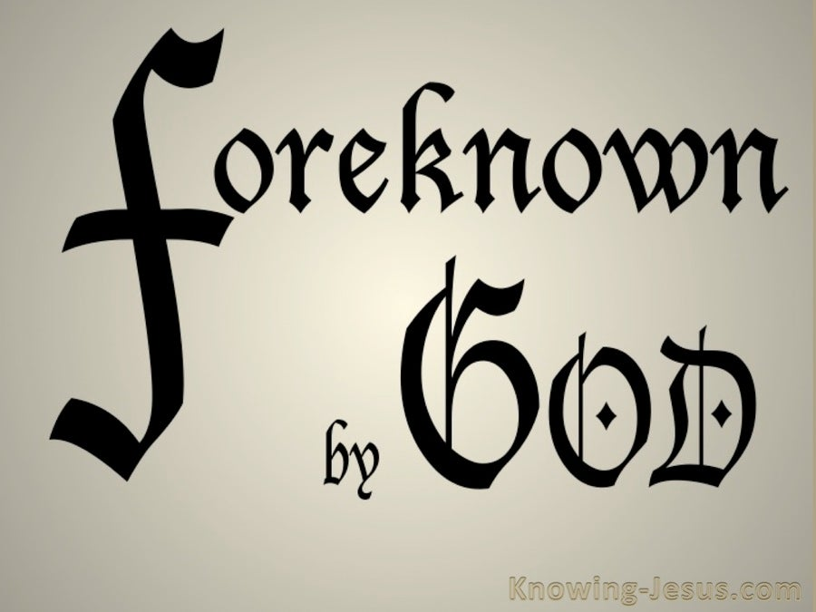 gods foreknowledge and the problem of