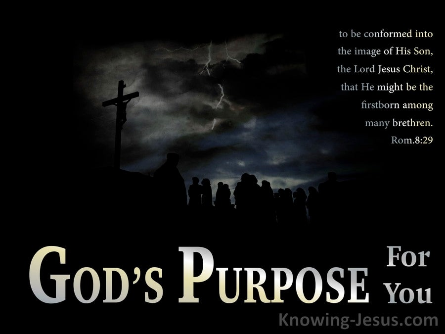 Romans 8:29  God's Purpose For You (devotional)06:02 (black)