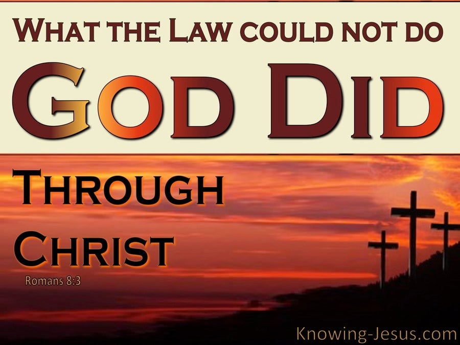 Romans 8:3 What The Could Not Do God Did (brown)