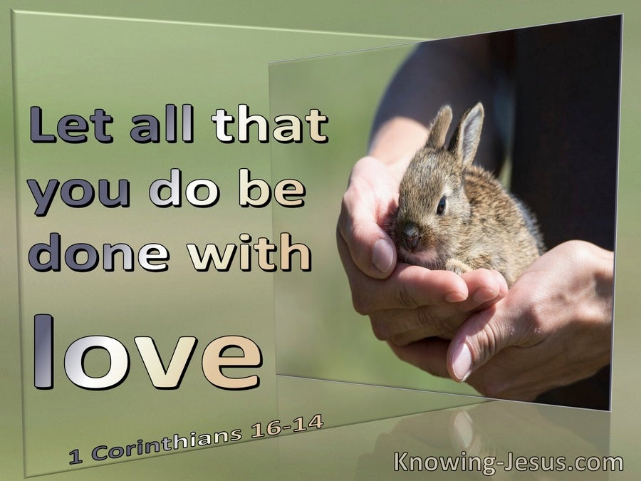 1 Corinthians 16:14 Let All You Do Be Done With Love (sage)