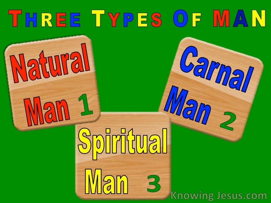 The Natural Man (devotional) (green) - 1 Corinthians 3:1