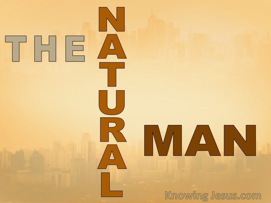 The Natural Man (devotional) (brown)