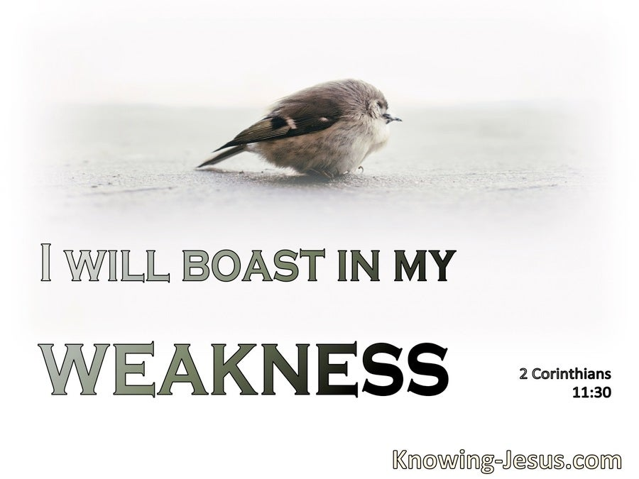 2 Corinthians 11:30 I Boast Of What Pertains To My Weakness (sage)