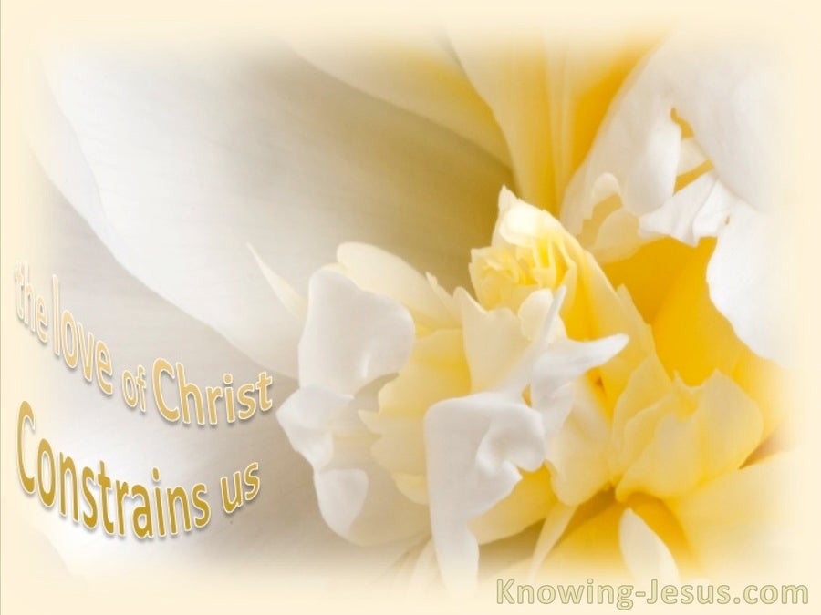 Good Enough (devotional) (yellow) - 2 Corinthians 5:14