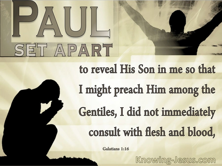 Galatians 1:16 Set Apart To Reveal God's Son In Paul (brown)