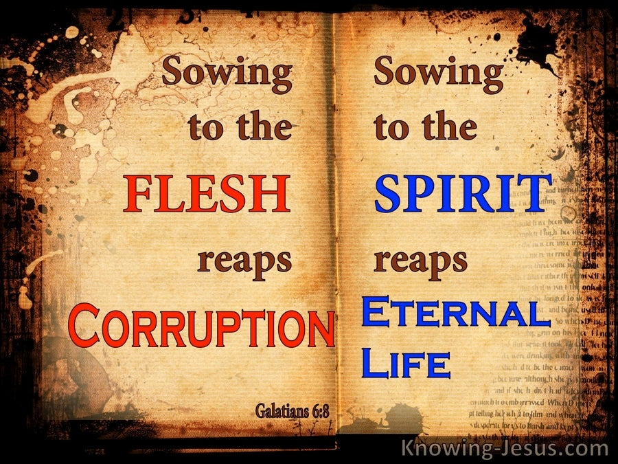 Galatians 6:8 Sowing To The Spirit Reaps Eternal Life (brown)