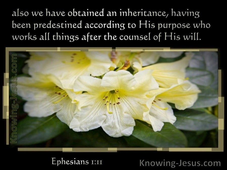 Ephesians 1:11 We Have Obtained An Inheritance Having Been Predestined (black)