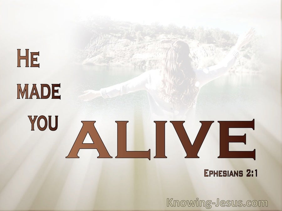 Ephesians 2:1 You He Made Alive (brown)