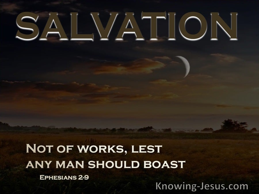 Ephesians 2:9 Not Of Works, Lest Any Man Should Boast (black)